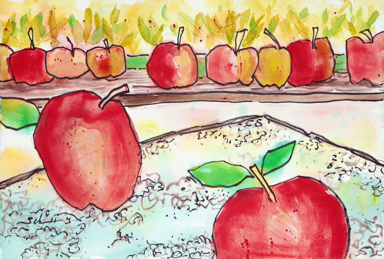 Apples yhjyhe
