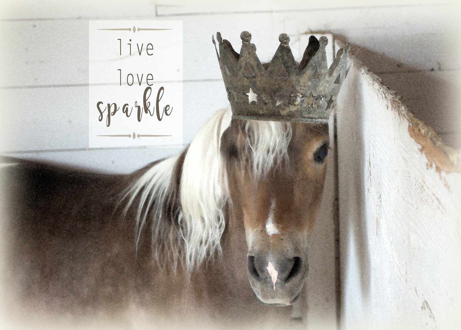 Pony crowned 2 lgrier