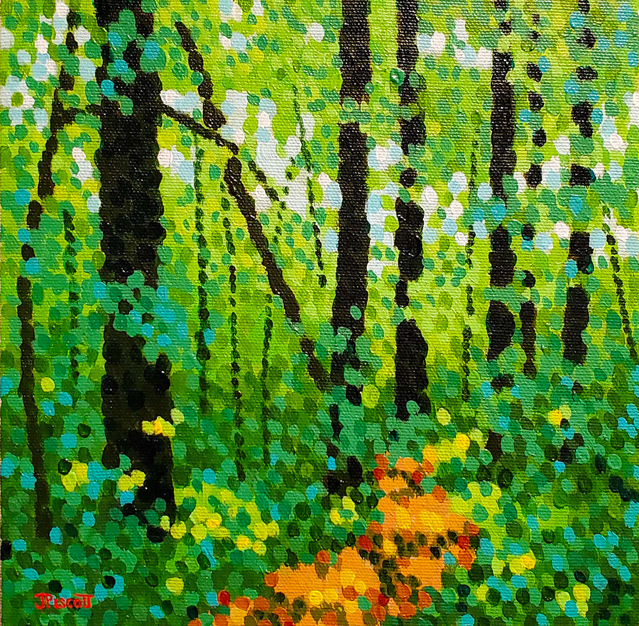Woodland path pvnix2