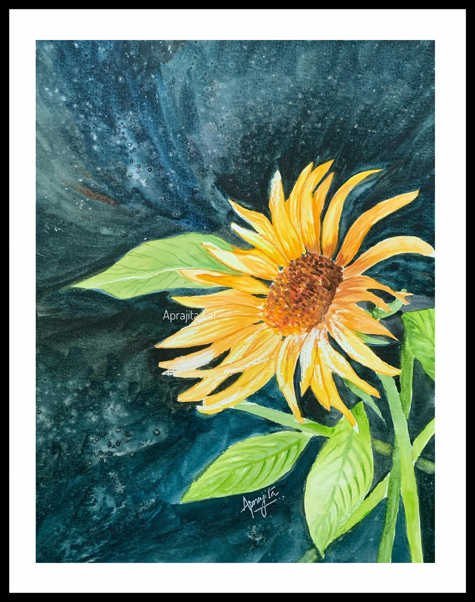 Sunflower original svysnf