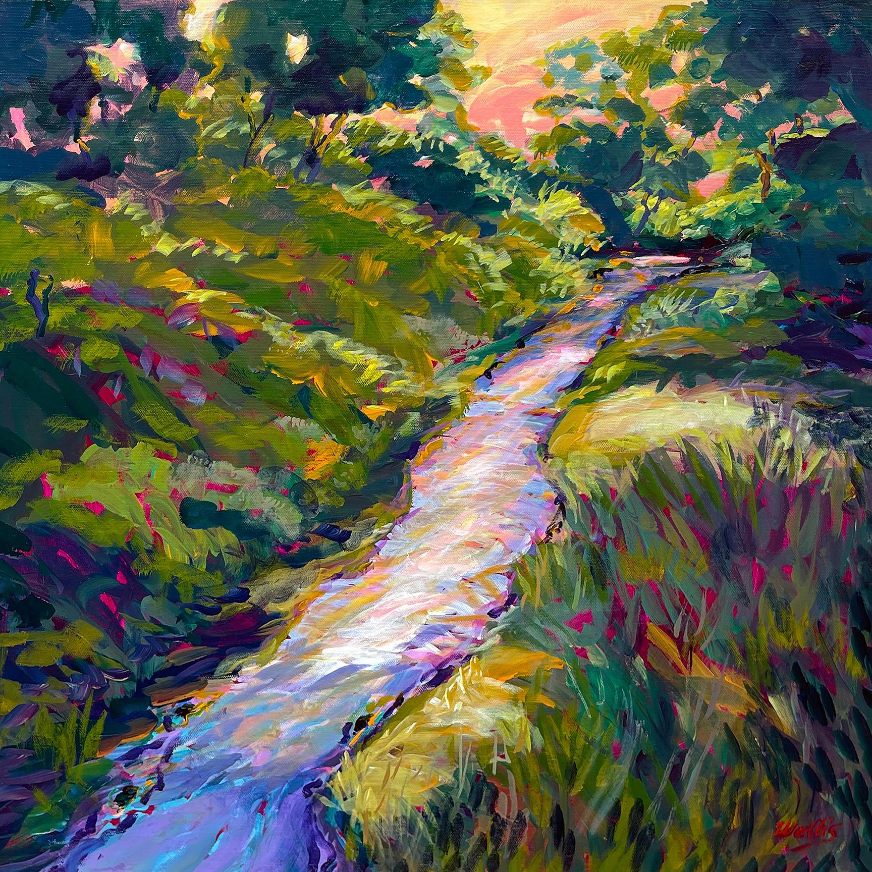 Spring rains fill the dry creek at dusk 72 msqmrt