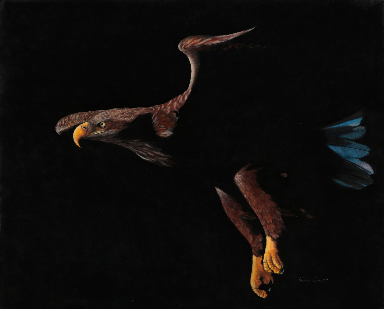 On eagles wings eacmff