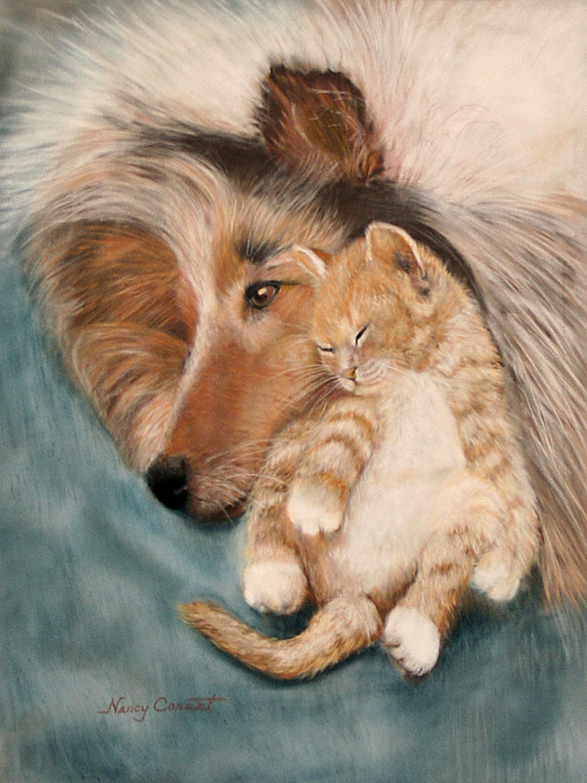 Snuggle buddies qz5iq2