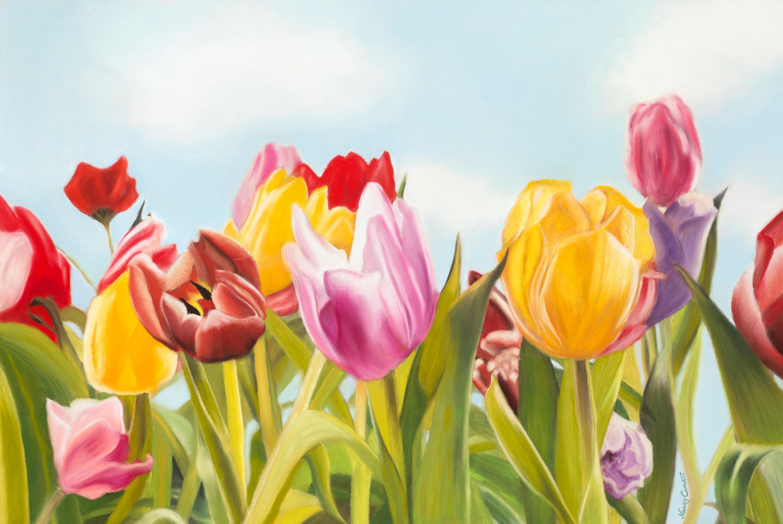 Tulip delight jpg bwpujt