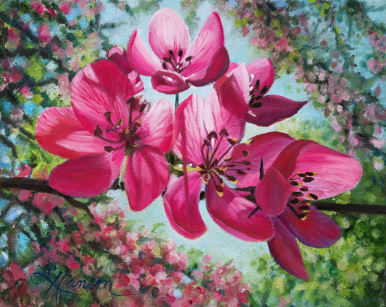Pink apple blossoms unxv0c