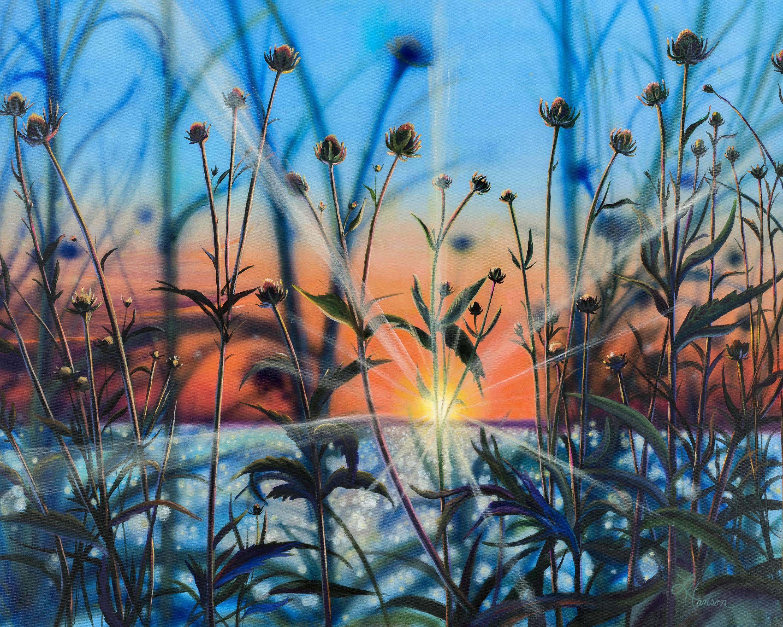 Sunset silhouette rdnoih