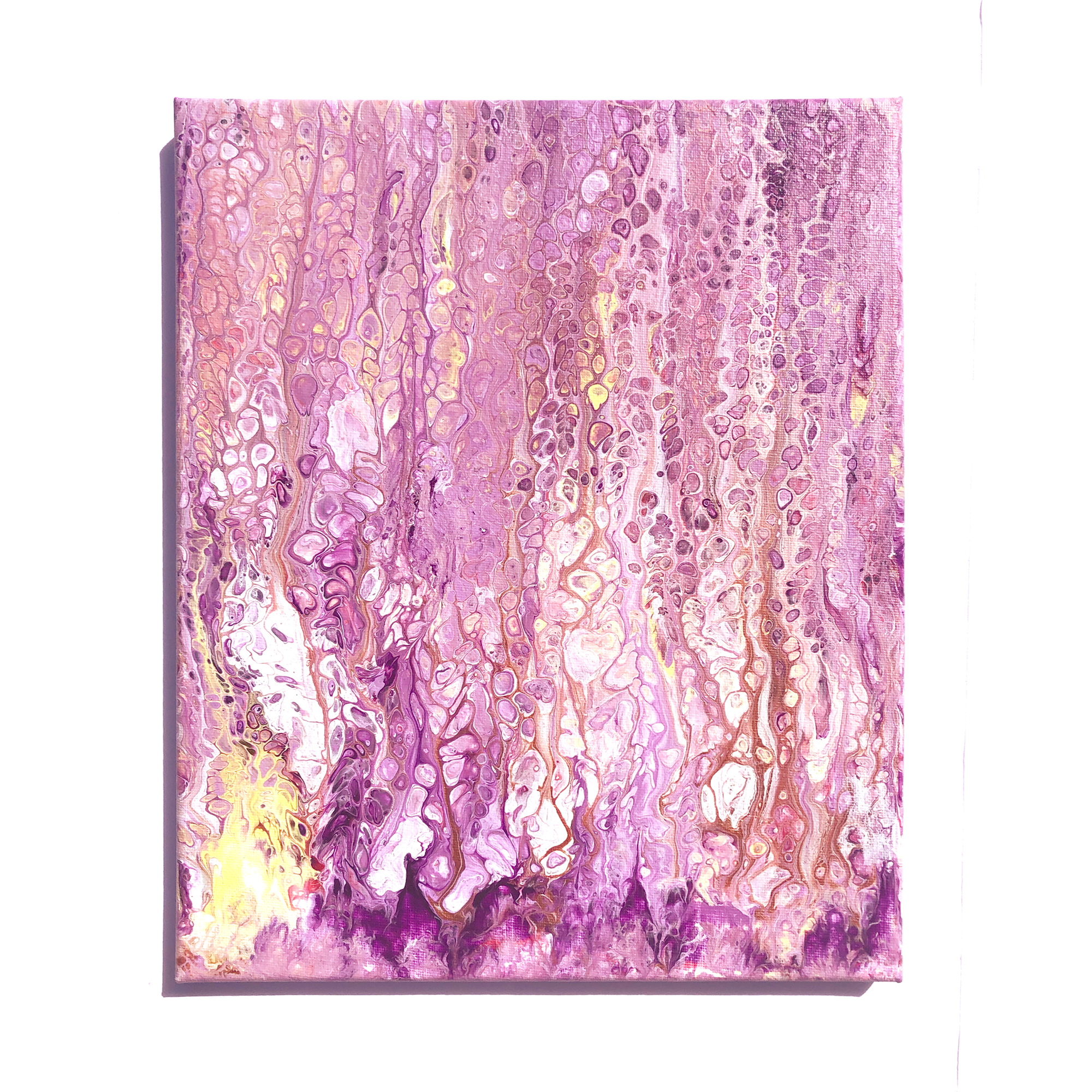 Pink champagne   img 5806 v5 final ig h4vphk
