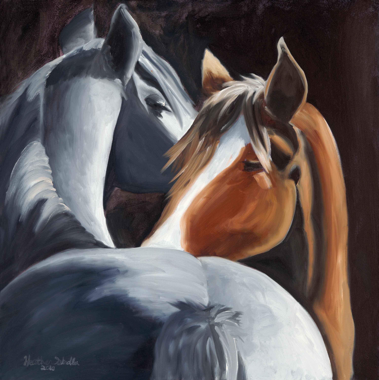 Horses tqoowx
