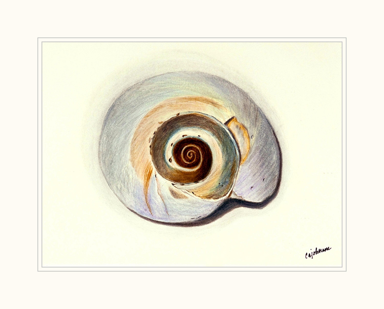 Nautilus matted hlx2bz