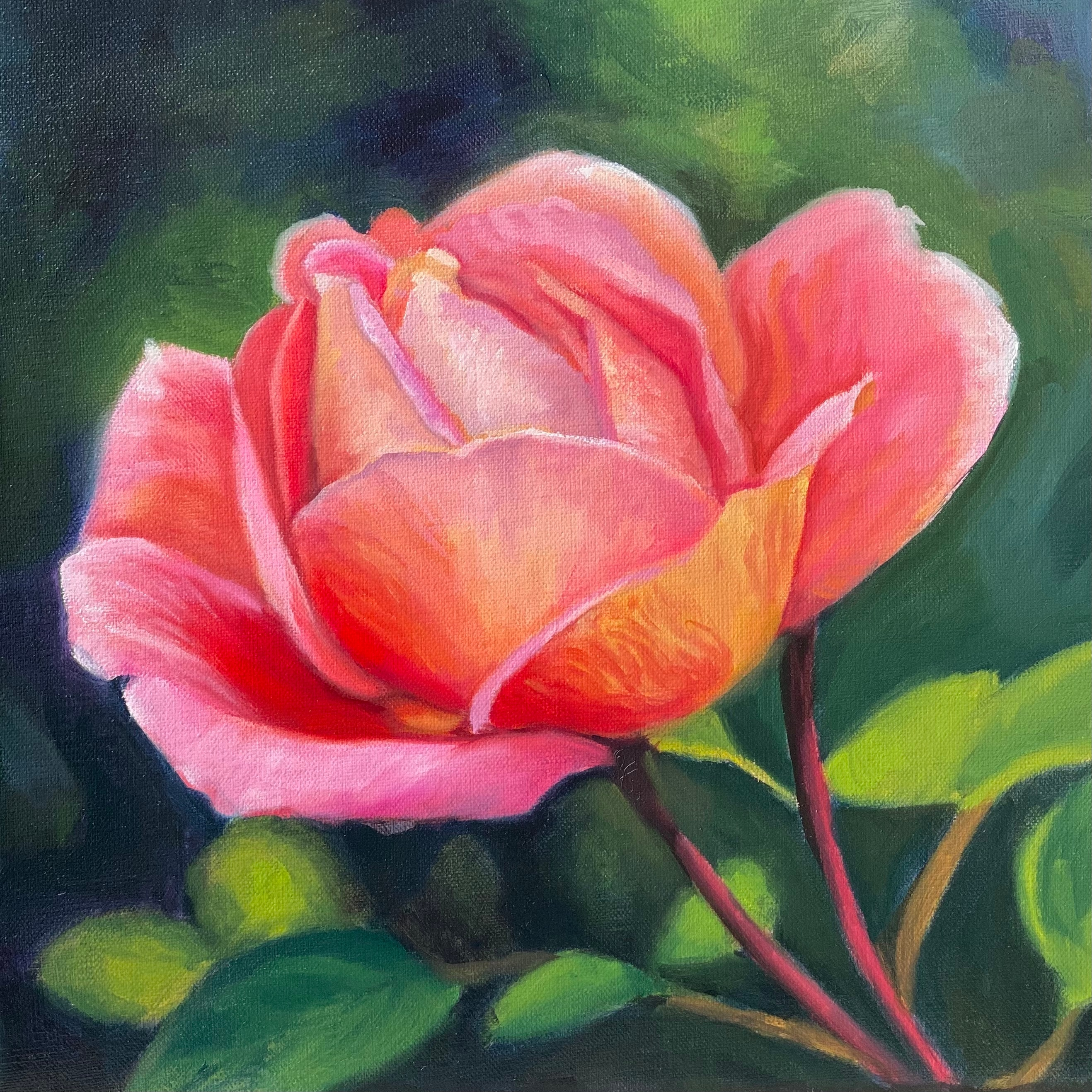 Pink peace rose 10x10 tkrimo