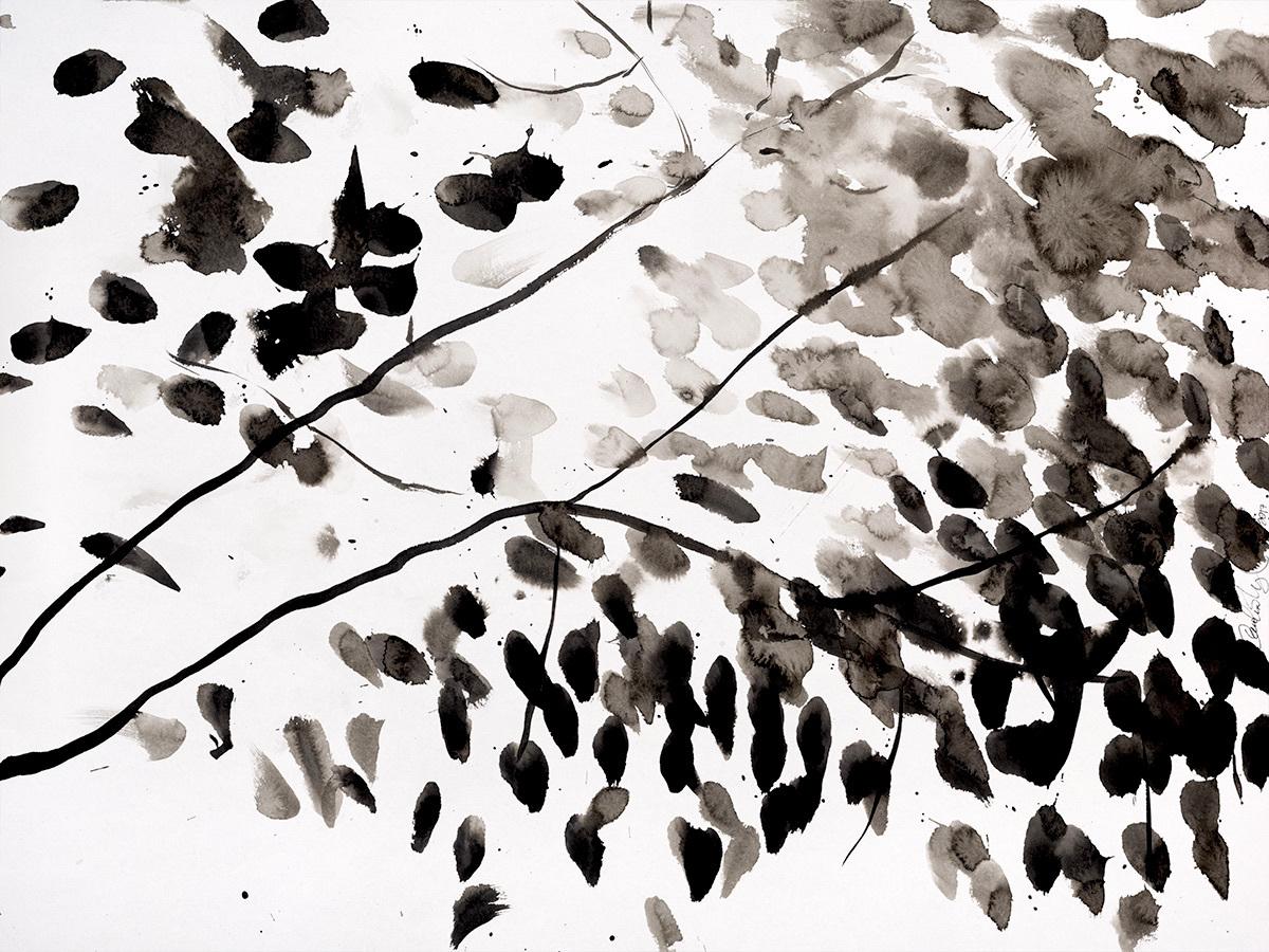 Leaf dance 2 ffka9n