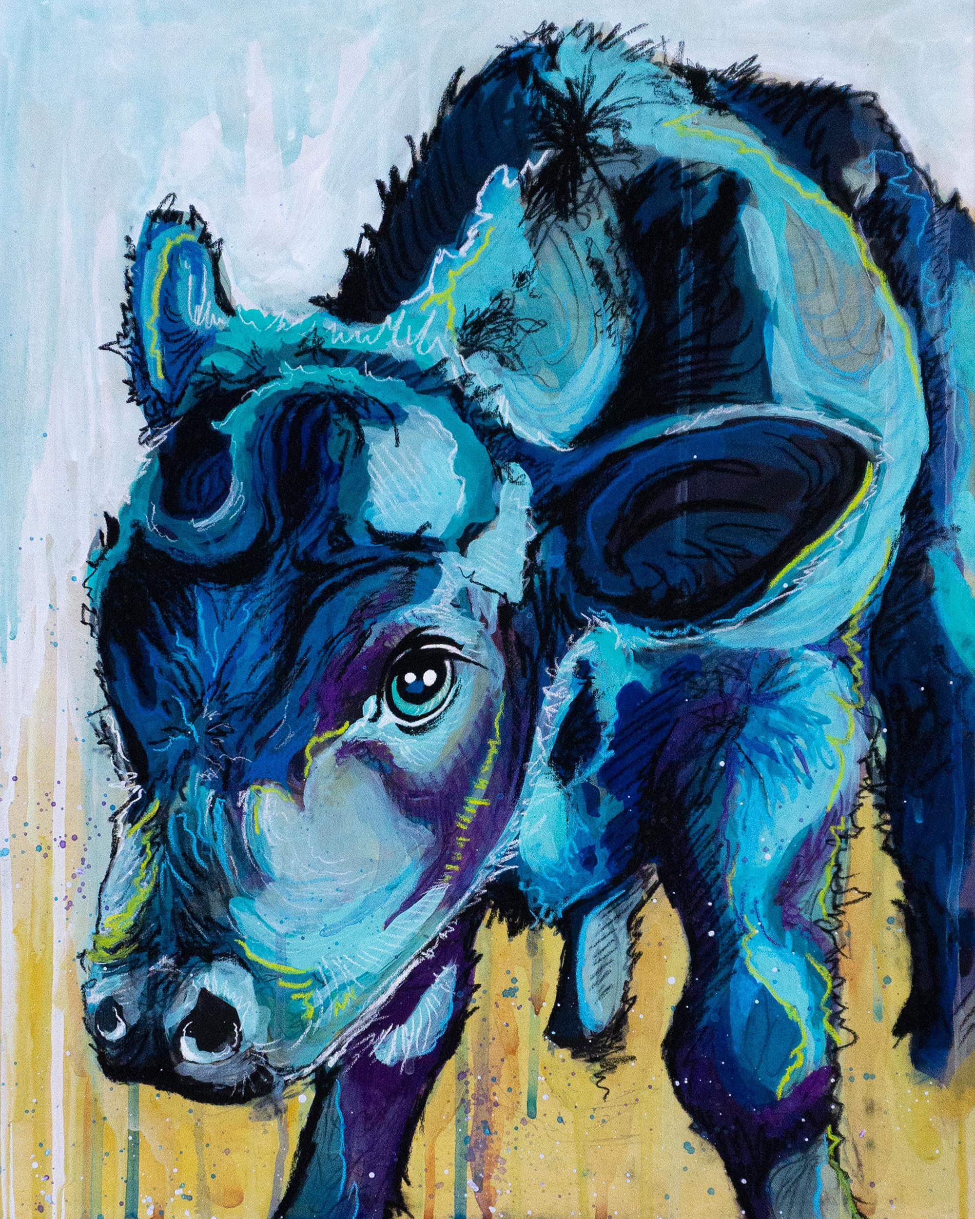 Blue calf final original i9epwu